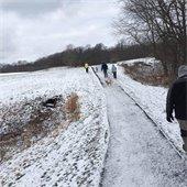 Murrysville Community Park Walking Path