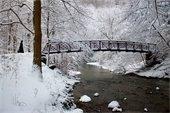 Duff Park Bridge