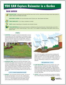 You Can Capture Rainwater in a Garden - Rain Garden